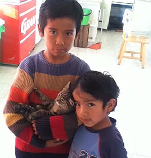 Amigos Image 6
