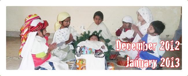 January 2013 Newsletter Header