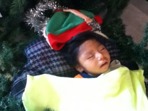 Alvaro resting peacefully as baby Jesus in our nativity scene