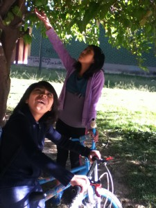 Bryssa and Evelyn snacking on mulberries in the park.