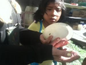 Alandra and a massive ostrich egg